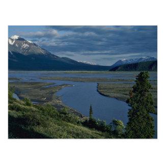 River Entered The Plains Postcard
