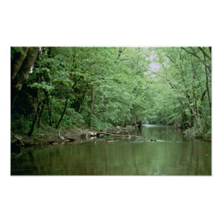 River Habitat, Kentucky Poster