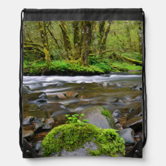 River in green forest, Oregon Drawstring Bag