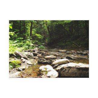 River in the Wood Canvas Print