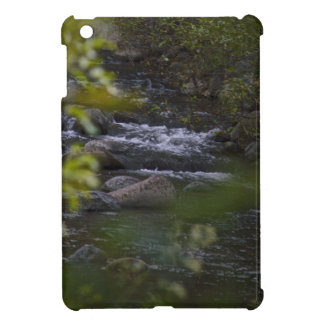 river iPad mini case
