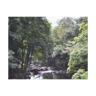 River Llugwy at Betws-y-Coed, Wales Gallery Wrap Canvas