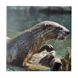 River Otter Animal-lover's Wildlife Photo Small Square Tile
