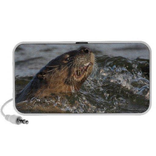 river otter eating fish travelling speaker