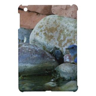 river rocks iPad mini cases