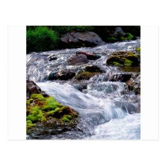 River Rushing Georgia Postcard