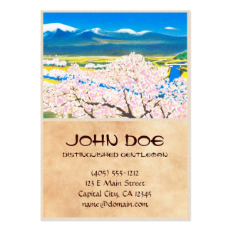 River Surface of Cherry Blossoms Yamagata Japan Pack Of Chubby Business Cards