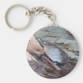 River Turtle Basic Round Button Key Ring