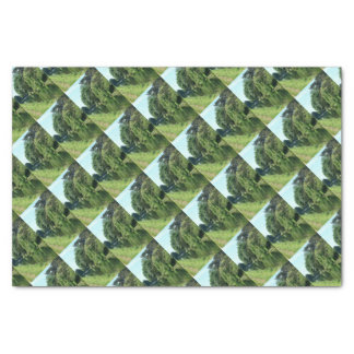River walk green leaves and trees tissue paper