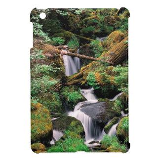 River Watson Umpqua Forest Oregon iPad Mini Covers