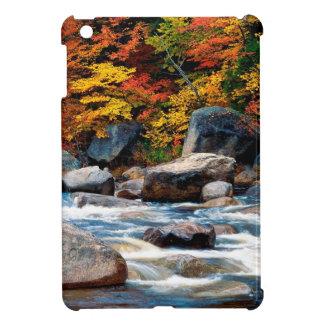 River White New Hampshire iPad Mini Cases