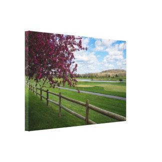 Rivercut In Spring Canvas Print