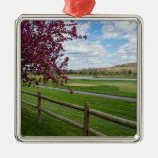 Rivercut In Spring Silver-Colored Square Decoration