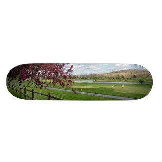 Rivercut In Spring Skate Boards