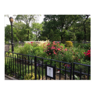 Riverside Park Garden New York City NYC Postcard