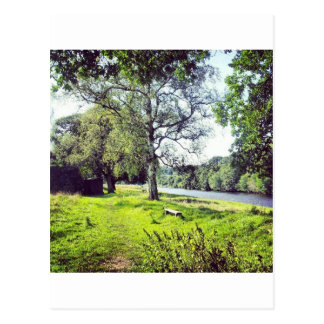 Riverside Postcard