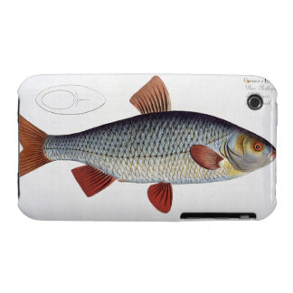 Roach (Cyprinus Rutilis) plate II from 'Ichthyolog Case-Mate iPhone 3 Cases