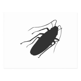 Roaches Yick Post Card