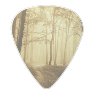 Road in a dark forest with fog acetal guitar pick