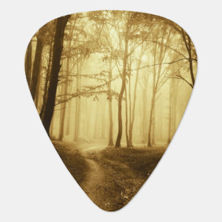 Road in a dark forest with fog plectrum