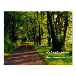 road less travelled poster