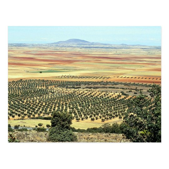 Road to Ciudad Real from Orgaz, Castilla-La Mancha Postcard