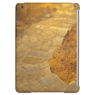 road to paradise case for iPad air