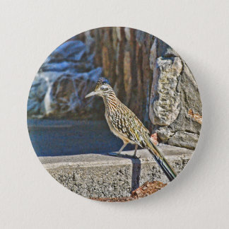 Roadrunner Button