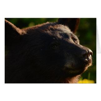 Roadside Bear Card