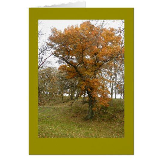 Roadside Oak Tree in Autumn on Blank Note Card