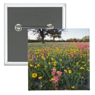 Roadside wildflowers in Texas, spring 3 15 Cm Square Badge
