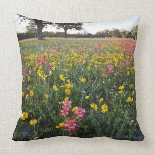 Roadside wildflowers in Texas, spring 3 Pillow