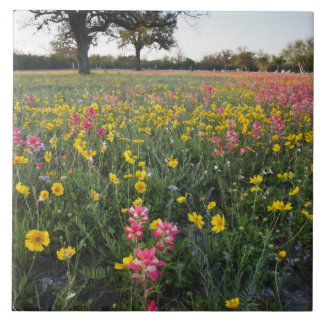 Roadside wildflowers in Texas, spring 3 Large Square Tile