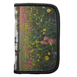 Roadside wildflowers in Texas, spring 3 Organizer