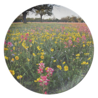 Roadside wildflowers in Texas spring 3 Party Plates