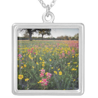 Roadside wildflowers in Texas, spring 3 Silver Plated Necklace