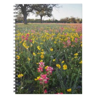 Roadside wildflowers in Texas, spring 3 Spiral Notebooks