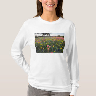 Roadside wildflowers in Texas, spring 3 T-Shirt