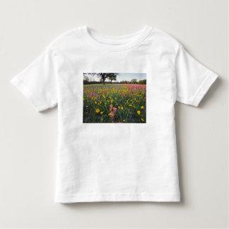 Roadside wildflowers in Texas, spring 3 Tshirt