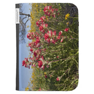 Roadside wildflowers in Texas spring 4 Kindle Cover