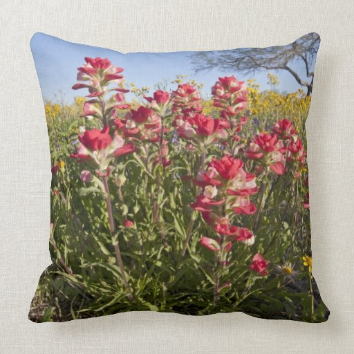 Roadside wildflowers in Texas, spring 4 Throw Pillows