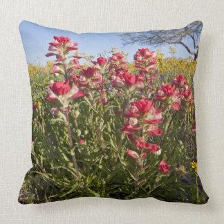 Roadside wildflowers in Texas spring 4 Throw Pillows
