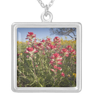 Roadside wildflowers in Texas, spring 4 Silver Plated Necklace