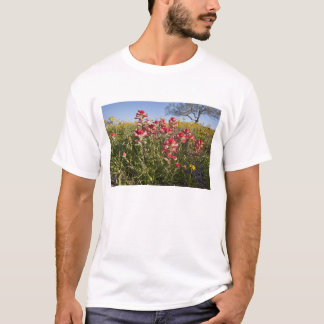 Roadside wildflowers in Texas, spring 4 T-Shirt