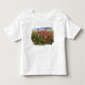 Roadside wildflowers in Texas, spring 4 Toddler T-Shirt