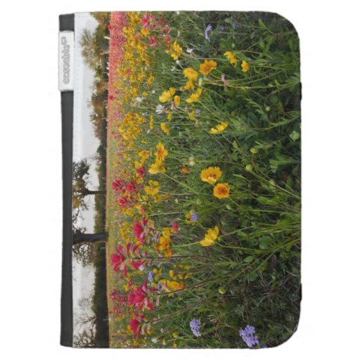 Roadside wildflowers in Texas, spring Cases For The Kindle