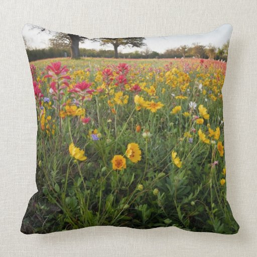 Roadside wildflowers in Texas, spring Throw Pillows
