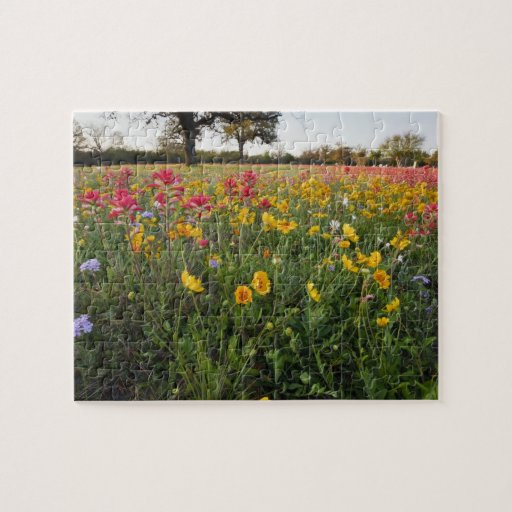 Roadside wildflowers in Texas, spring Jigsaw Puzzle