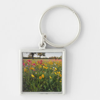 Roadside wildflowers in Texas, spring Silver-Colored Square Key Ring