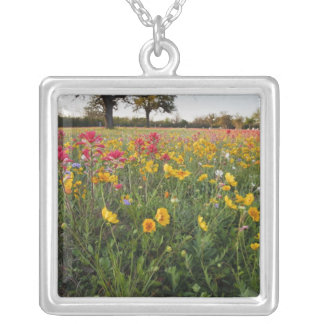 Roadside wildflowers in Texas, spring Silver Plated Necklace